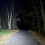 Die BC25 leuchtet auf den Baum